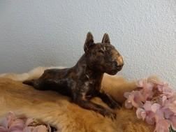 Bull Terrier beeld los of als set incl. urn te koop