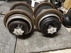 Technogym Dumbells 30kg en 24 kg gietijzeren Dumbells