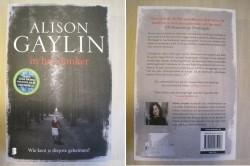 270 - In het donker - Alison Gaylin