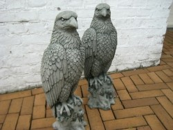 betonbeeld adelaar