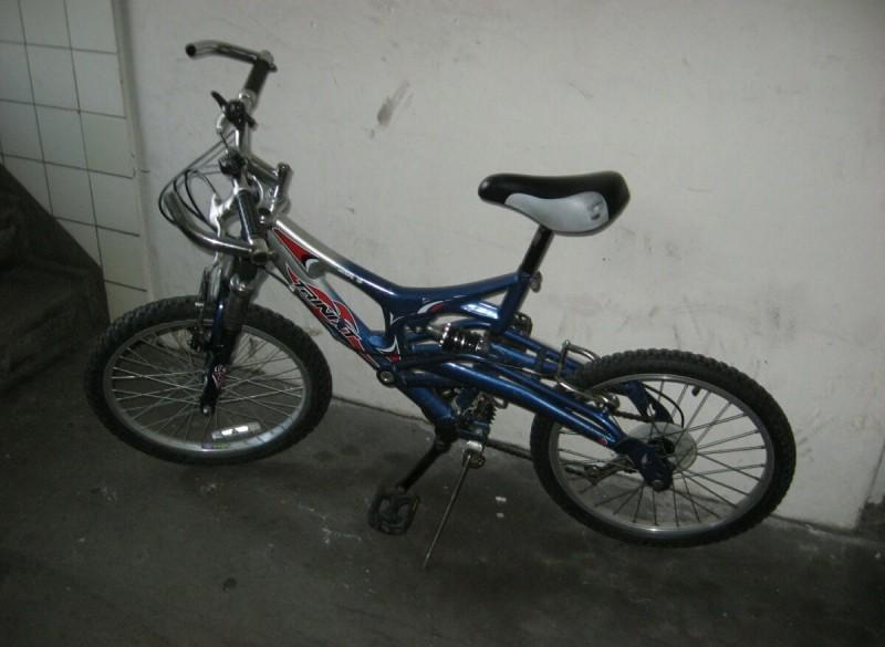 Blauwe Dubbel Geveerde BMX