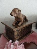 American Buldog in 2 soorten op urn als set of los te koop