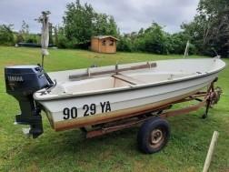 Boot, inclusief buitenboordmotor en trailer