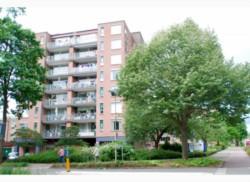 Te huur: appartement in Harderwijk