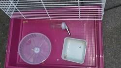 Hamsterkooi met toebehoren