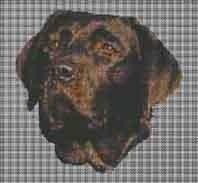 Borduurpakket : Labrador Retriever