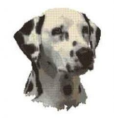 borduurpakket : Dalmatische hond