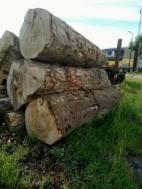 droog openhaardhout
