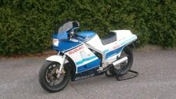 1986 Suzuki Rg 500