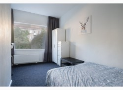 Te huur: kamer (gemeubileerd) in Rotterdam