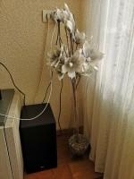 2 decoratieve vazen