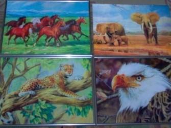 3-D fotoplaten van dieren