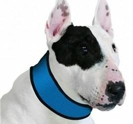Aqua Coolers koel halsband voor uw hond vanaf 6,49