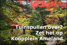 Zet je tuinspullen op Koopplein