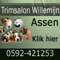 Trimsalon,honden,knippen