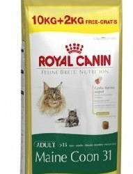 Royal Canin maine coon 10+2kg gratis €48,00