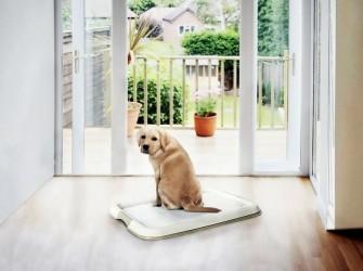 Puppy toilet met 7 gratis pads nu €15,99