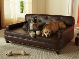 Hondensofa Enchanted Pets meest luxe sofas €79,99