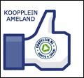 Like Koopplein Ameland on Facebook