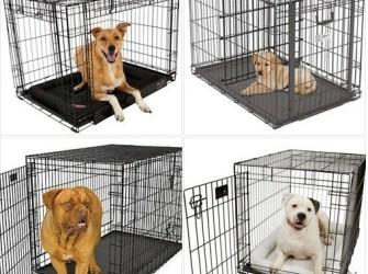 Goedkoopste en grootste hondenbenchspecialist SALE!