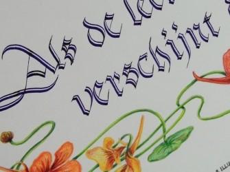 Cursus Kalligraferen voor gevorderden