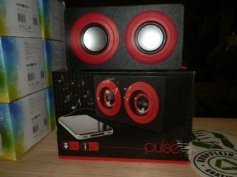Pulse portable speaker