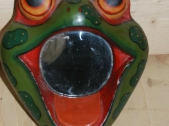 Kikkerspiegel