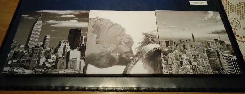Te koop drie afbeeldingen op canvasdoek (20 x 20 cm).